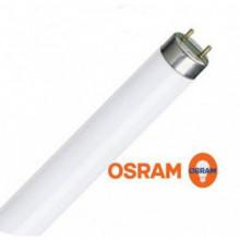 Лампа osram l36w/765 Dl Rus